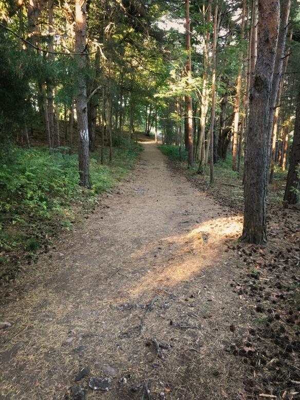 gressholmen-path