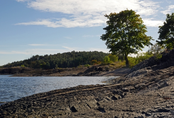 Gressholmen shore