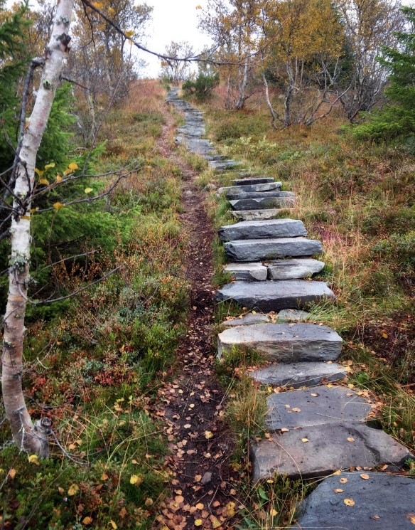 saturday-hiking-stone-steps_sm